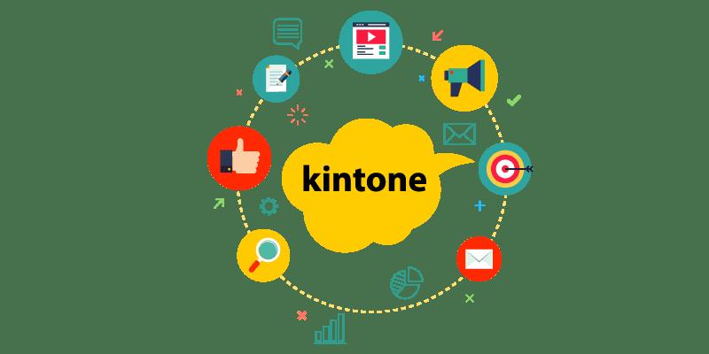 kintone はドラッグ&ドロップでシステム開発ができ、とても簡単です。しかし標準機能で満足できないこともよくあります。そうなるとプラグインを入れたり、JavaScript でカスタマイズしたりすることになります。